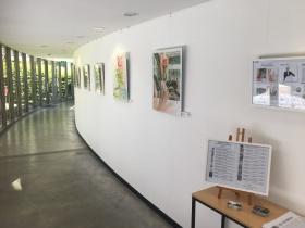 Exposition Galerie Cour des Comptes